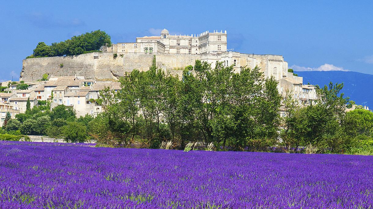 Vue du château de Grignan avec champ de lavandes